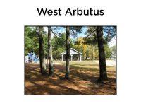 west_arbutus.jpg